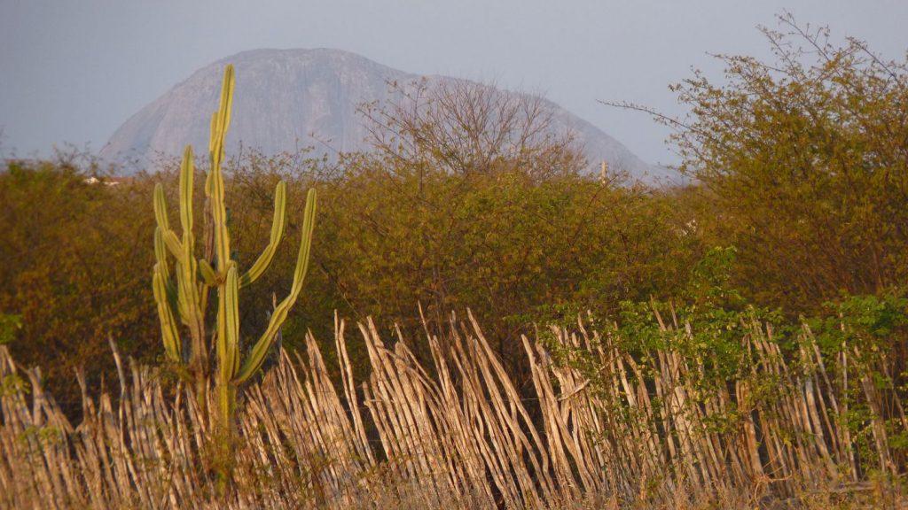 BR – Landscape of the Quixeramobim area