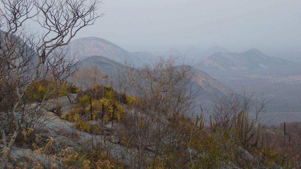 BR – Dry vegetation in the mountains close to Quixeramobim